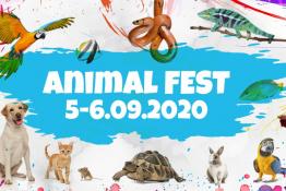 Poznań Wydarzenie Targi Animal Fest